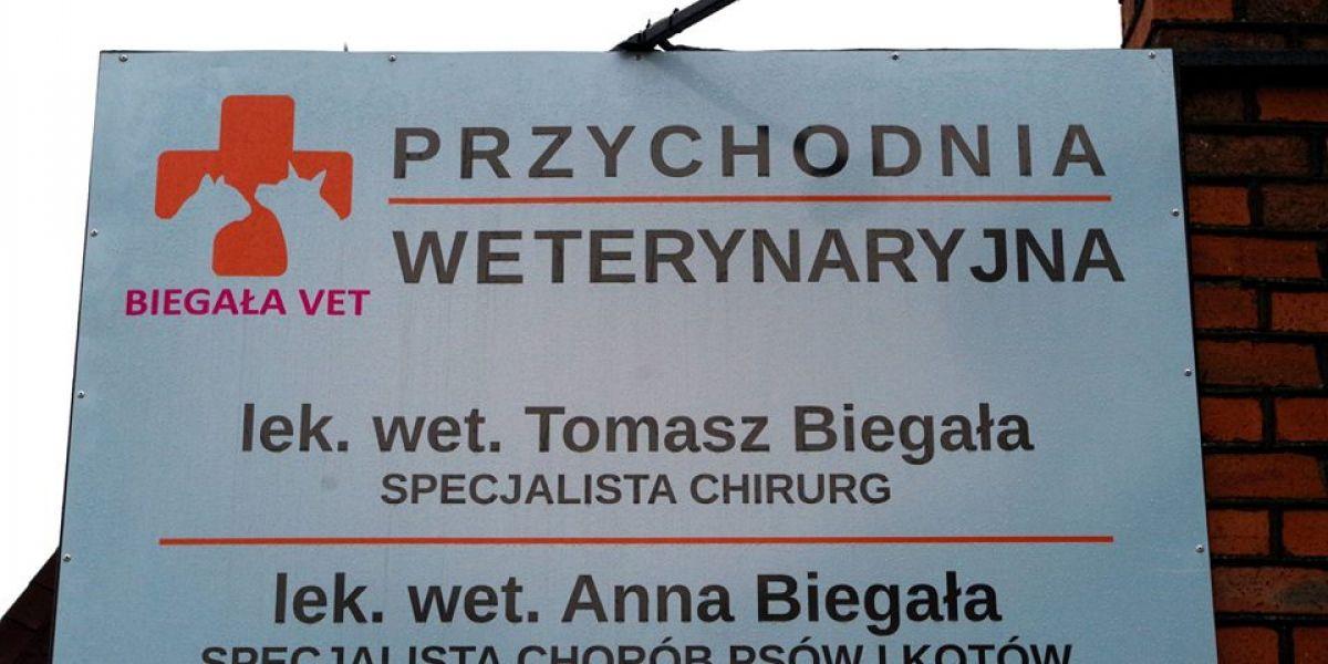 Biegaławet -